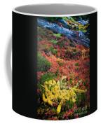 Enchanted Colors Coffee Mug