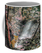 Enchanted Forest - Featured In Wildlife Group Coffee Mug