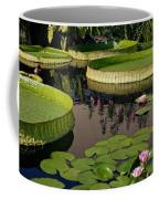 Enchanting Water Garden Coffee Mug