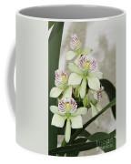 Encyclia Radiata Coffee Mug