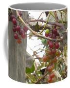 End Of Season Grapes Coffee Mug