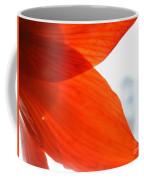 Enfolding In Orange Coffee Mug