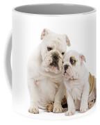 English Bulldog, Adult And Puppy Coffee Mug