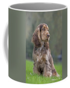 English Cocker Spaniel Dog Coffee Mug