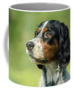 English Setter Dog Coffee Mug