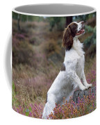 English Springer Spaniel Dog Coffee Mug