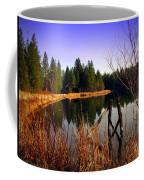 Enjoying The View At Grace Lake Coffee Mug