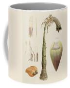 Ensete Number Ten Coffee Mug