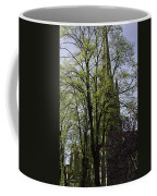 Episcopal Cathedral In Edinburgh Visible Through Trees Coffee Mug