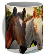 Equestrian Beauties Coffee Mug