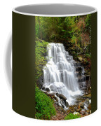 Erie Falls Coffee Mug