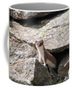 Ermine Coffee Mug