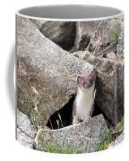 Ermine In Wildlife Coffee Mug