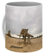 Eroded Tree Stumps Stand On Their Roots Coffee Mug