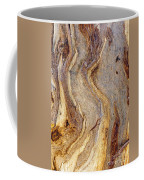 Eucalyptus Bark Coffee Mug