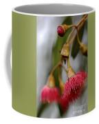 Eucalyptus Flower Coffee Mug