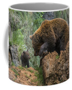 Eurasian Brown Bear 13 Coffee Mug
