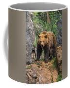 Eurasian Brown Bear 14 Coffee Mug