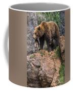Eurasian Brown Bear 15 Coffee Mug