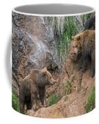 Eurasian Brown Bear 17 Coffee Mug