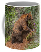 Eurasian Brown Bear 21 Coffee Mug