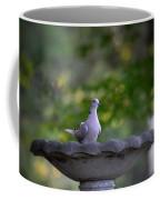 Eurasian Collared Dove Coffee Mug