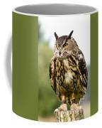 Eurasian Eagle Owl On Log Coffee Mug