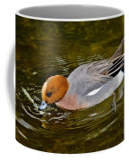 Eurasian Wigeon Feeding Coffee Mug