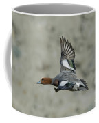 Eurasian Wigeon Flying Coffee Mug