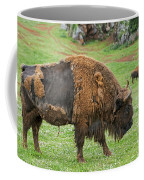 European Bison 4 Coffee Mug