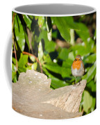 European Robin Coffee Mug