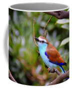 European Roller Coffee Mug