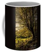 Evening Beech Coffee Mug