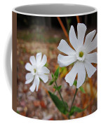 Evening Lychnis Coffee Mug