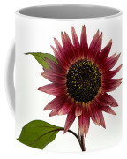 Evening Sun Sunflower 2 Coffee Mug
