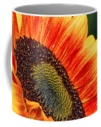 Evening Sun Sunflower Coffee Mug