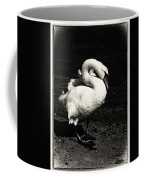 Evening Swan Coffee Mug