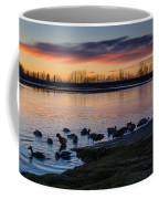 Evening Swim Coffee Mug