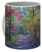 Evening Walk Thru The Woods Coffee Mug