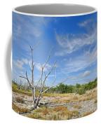 Everglades Coastal Prairies Coffee Mug