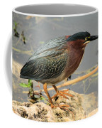 Everglades Green Heron Coffee Mug