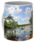 Everglades Landscape 8 Coffee Mug