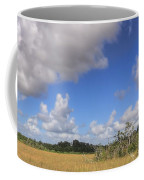 Everglades Landscape Panorama Coffee Mug