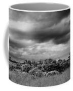 Everglades Storm Bw Coffee Mug