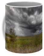 Everglades Storm Coffee Mug by Rudy Umans