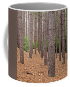 Evergreen Infinity Coffee Mug