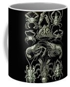 Examples Of Decapoda Kunstformen Der Natur Coffee Mug by Ernst Haeckel