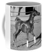 Exercising Horse Bw Coffee Mug