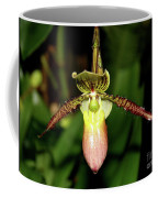 Exotic Beauty Coffee Mug