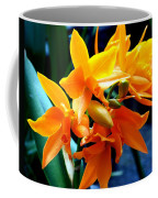 Exotic Orange Coffee Mug
